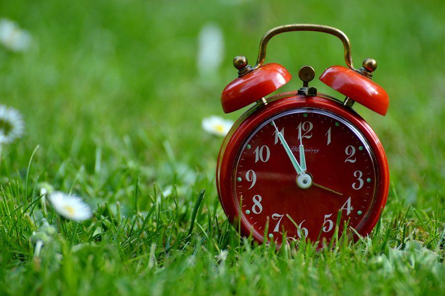 ¿Y si los niños se organizan su tiempo?
