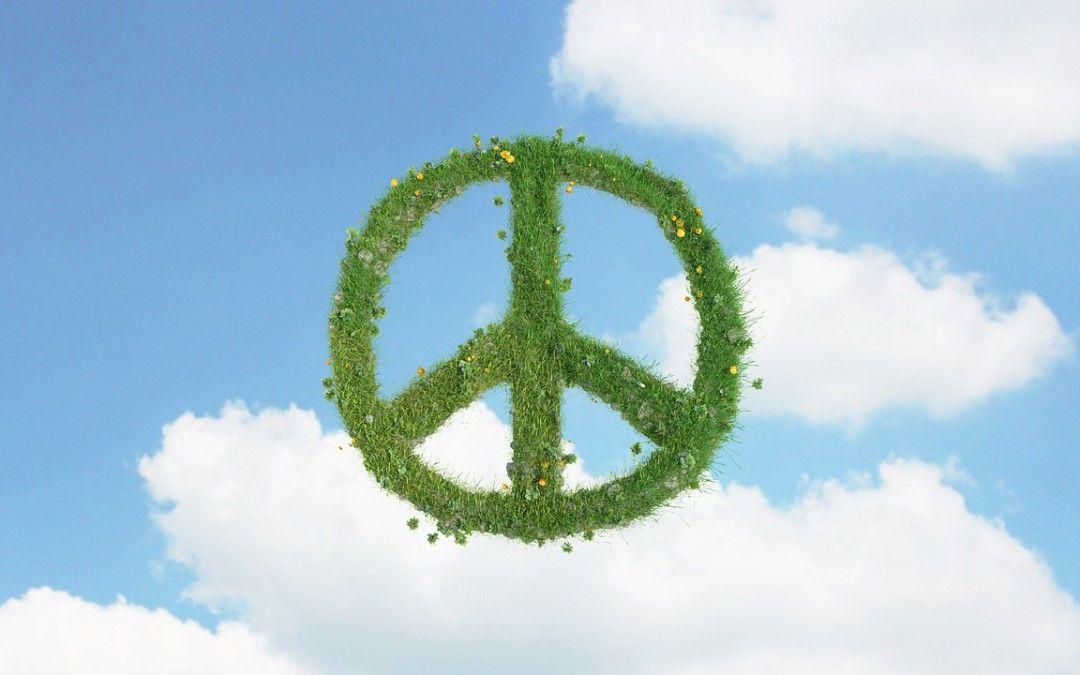 30 de enero – Día Escolar de la No Violencia y la Paz –