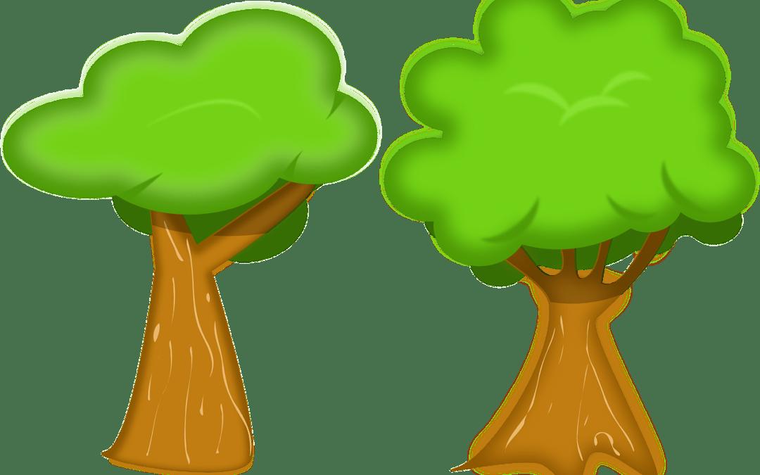 5 J – Día Mundial del Medio Ambiente